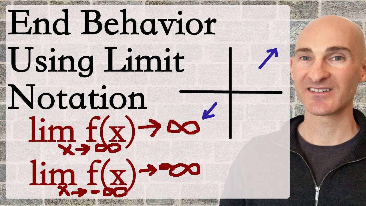 describe the end behavior for each of the functions by writing a limit expression