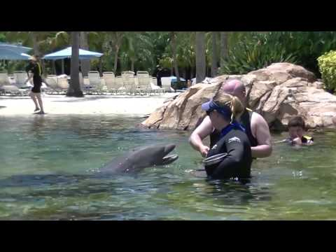 Discovery Cove 2016