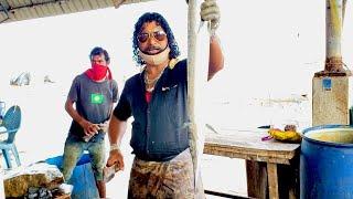 Huge Houndfish Cutting   Fish Cutting Skills