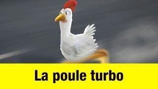 La poule turbo - Têtes à claques thumbnail