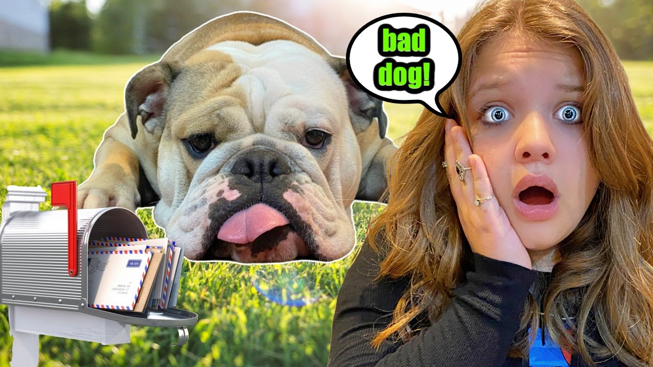 OPENING Fan MAIL with My Dog!  **FAIL**