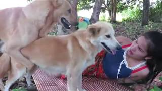 Wow Amazing Beautiful Girl Playing With Dog Smart & Funny Dog cat