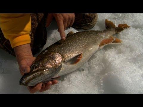 Colorado Ice Fishing for Big Lake Trout Granby Colorado Bernie Keefe