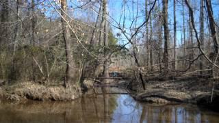 Tannerite Vs. Beaver Dam