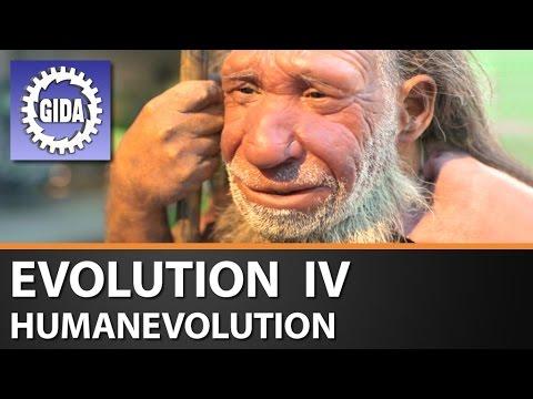 GIDA - Evolution IV - Humanevolution - Biologie - Schulfilm - DVD (Trailer)