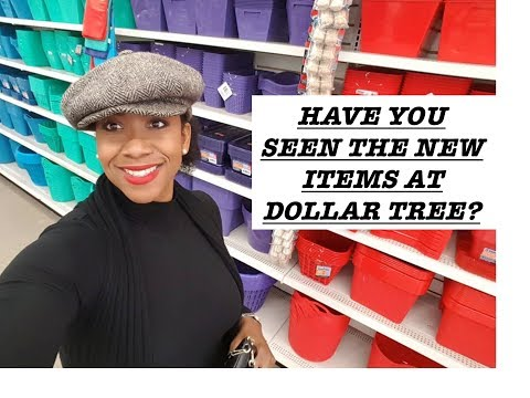 AMAZING FINDS AT DOLLAR TREE! COME SEE| STORAGE IDEAS