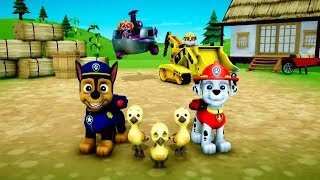 PAW PATROL ON A ROLL - Save The Baby Ducks - Episode 1 - Patrulha Pata - Happy Kids Games and Tv