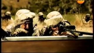 Снайперские винтовки США.