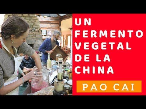Cómo hacer el PAO CAI (un fermento vegetal de la China)