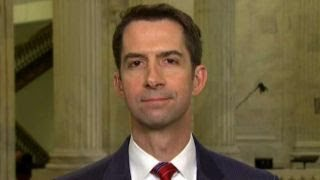 Sen. Cotton: Gov't shouldn't shut down over Dems' demands