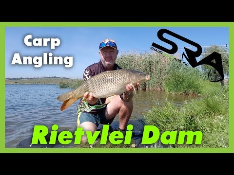 Carp Fishing At Rietvlei Dam. Shaun Rusch Will Show You How.