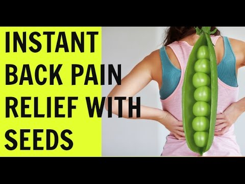 hqdefault - Sujok Seed Therapy For Back Pain