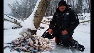 Рыбалка в декабре. Ловля окуня на безмотылку. Рыбалка с ночёвкой 2 серия