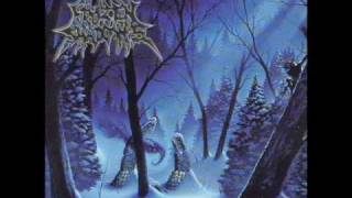 Frozen Shadows - Under Horrid Skies
