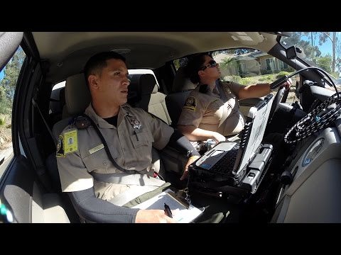 Hitching a Ride with Animal Control Officers