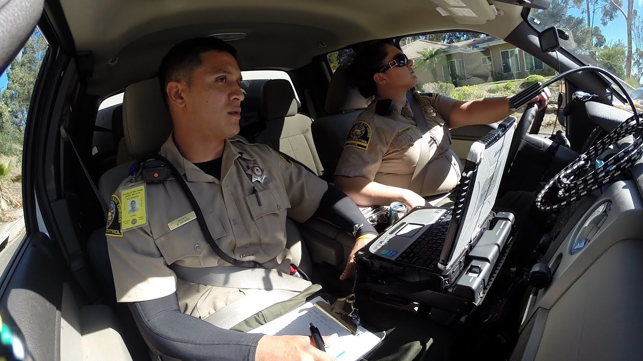 Hitching a Ride with Animal Control Officers   YouTube Hitching a Ride with Animal Control Officers