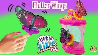 Interactive Little Live Pets Flutter Wings Butterflies + Habitat Toy Review Cookieswirlc Video