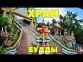 Буддийский храм, экзамен на ТАЙСКУЮ ВИЗУ - Пхукет, Таиланд