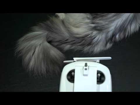dji-phantom-4-controller's-sturdier-smartphone/tablet-mount