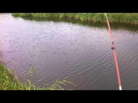 Рыбалка на севере. Голец. Полуостров Канин. Ненецкий АО