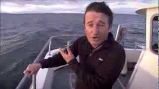Filming humpback whales off Ireland's so...