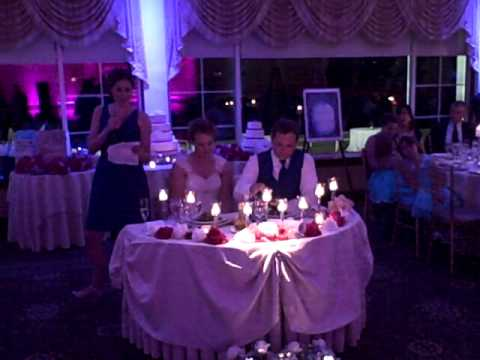Matron of Honor Kira Fehn Gives Toast at Wedding of Andrew Levy and Victoria Melroy