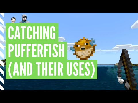 How To Get PUFFERFISH In Minecraft (And Their Uses)