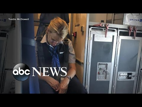 Flight attendant charged with being intoxicated l ABC News