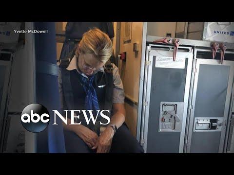 The News Junkie - Drunk Flight Attendant Arrested