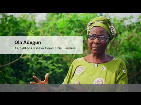 How Bosch Technology helps to improve the life of African communities: Cassava in Nigeria
