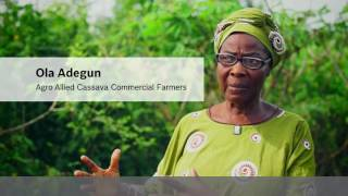 how bosch technology helps to improve the life of african communities cassava in nigeria