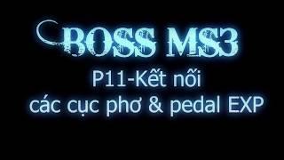 BOSS MS3 - P11 - Kết nối các cục phơ & pedal EXP