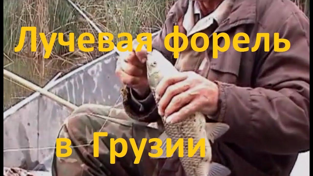Диалоги о рыбалке - 180 - Рыбалка в Грузии. Лучевая форель.