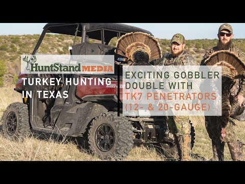 Turkey Hunting In Texas: Exciting Gobbler Double