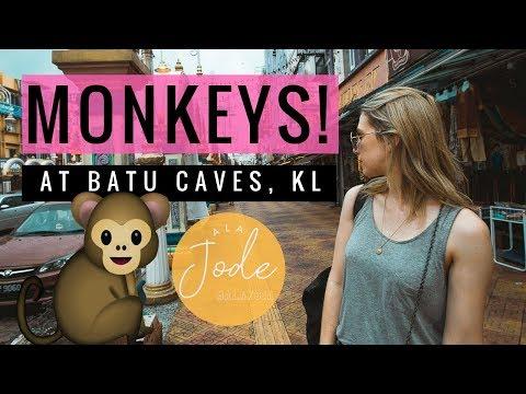 Kuala Lumpur Travel Vlog: Batu Caves, Infinity Pools + MONKEYS! | Malaysia 2017
