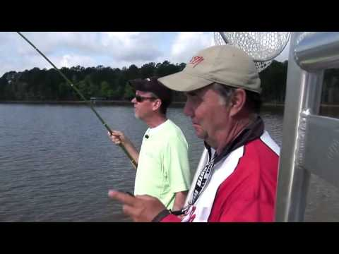 Roadside Canal Fishing in The Everglades from YouTube · Duration:  15 minutes 16 seconds  · 906.000+ views · uploaded on 12.12.2016 · uploaded by Jon B.