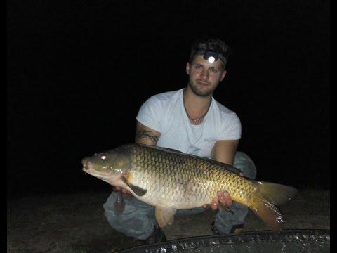 Fish Hunter Team--Carpfishing: Seconda Sessione--gold Carp