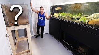 another-aquarium-build