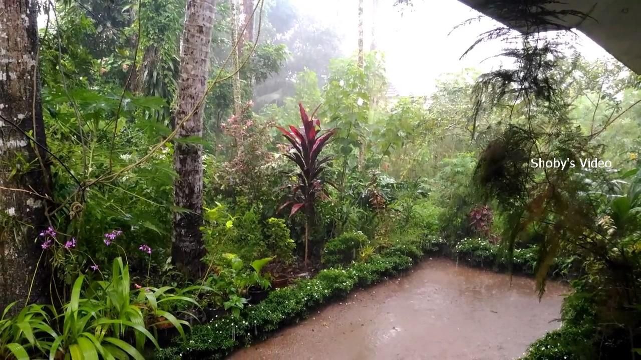 Essay on Rainy Season in India (Written in English Language)