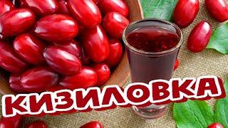 (18+) Кизиловая настойка на спирте (Наливка, Ликёр) Кизиловка
