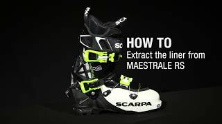 Video HOW TO Extract the liner from MAESTRALE RS download MP3, 3GP, MP4, WEBM, AVI, FLV November 2017