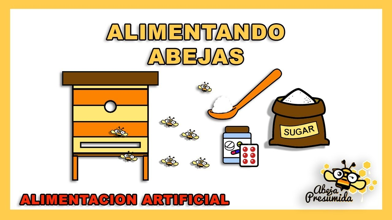 Alimentación artificial en colmenas 2017 Artificial feeding in hives ...