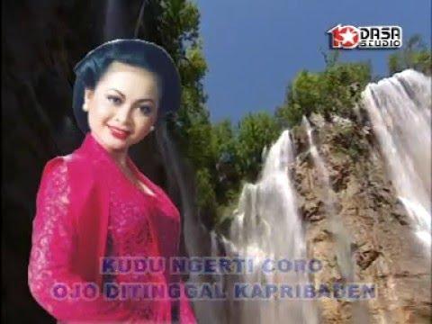 Ojo Dipleroki - Nurhana