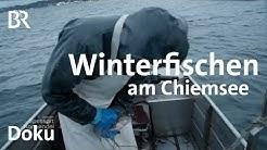 Winter: Fischen am Chiemsee - kein leichter Fang | Zwischen Spessart und Karwendel | Doku