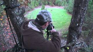 Video Bowana and the neighborhood buck that got away .mpg download MP3, 3GP, MP4, WEBM, AVI, FLV September 2018