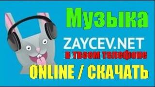 видео Зайцев-net ✩Новые и Лучшие Хиты Интернета ✩TOP 40 ✩