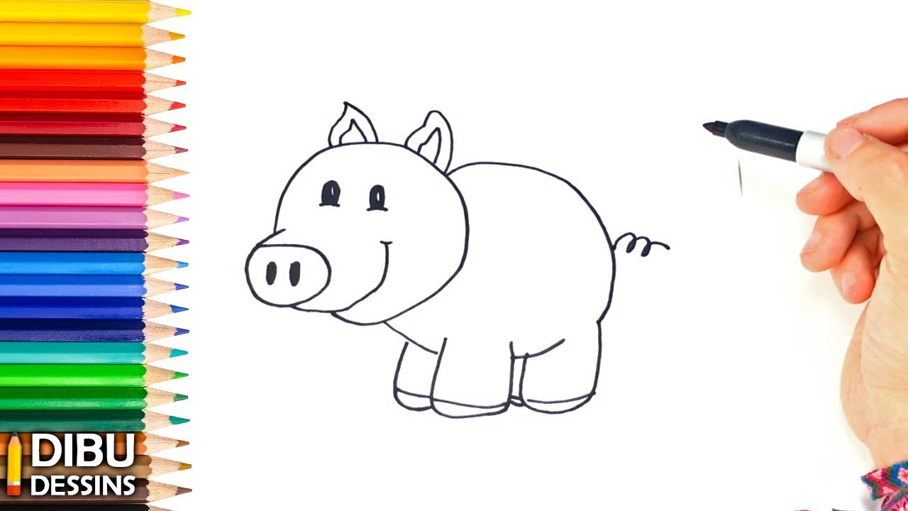 Comment Dessiner Un Petit Cochon Etape Par Etape Youtube