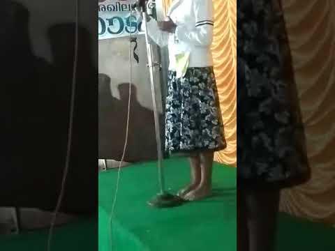 speech on disaster management