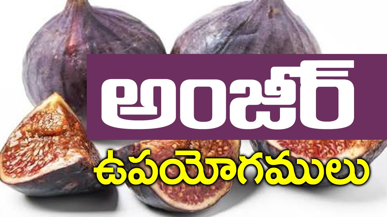 Walnuts in telugu meaning images for Cuisine meaning in telugu