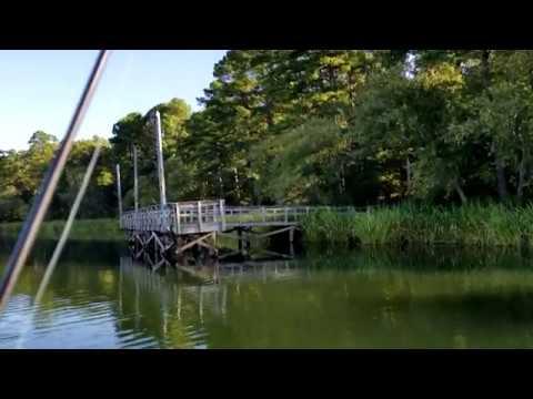 Tyler State Park Fishing